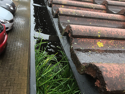 schools-gutters-before-cleaning
